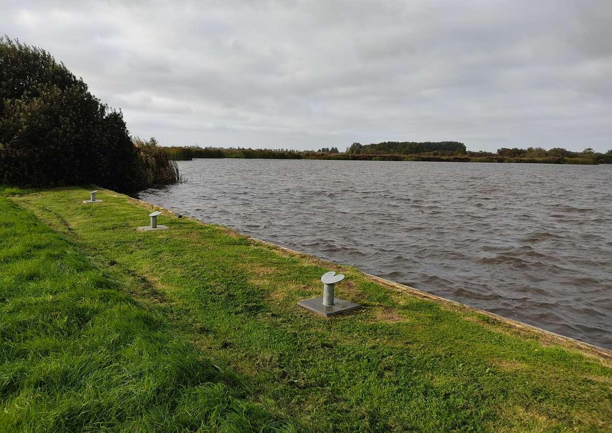 Marrekrite PR 04 P2 - Anchor près de Leeuwarden (Warten)